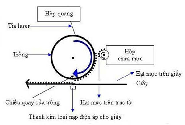 Cơ chế hoạt động của máy in